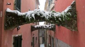 Vincenzo 24-2-2013 a